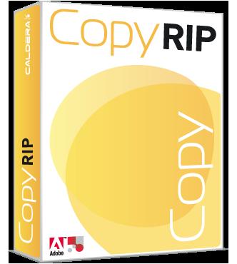 copyrip1